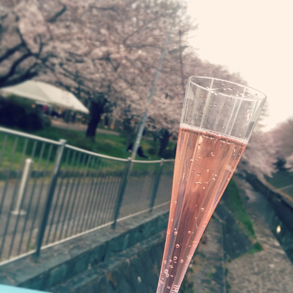 桜 カヴァ