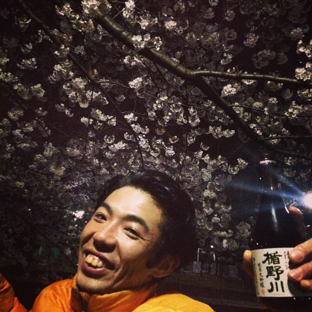 夜桜 花見